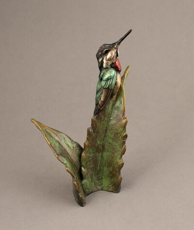 Bryce Pettit, 'Hummingbird on Agave', 2018