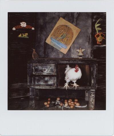 Roger Ballen, 'Untitled #074-2'