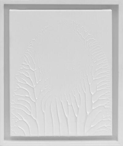 Thomas Tronel-Gauthier, 'Peinture Blanche F3 #2', 2016
