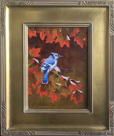 Guy Coheleach, 'Blue Jay Southern Red Maple', 2000-2019