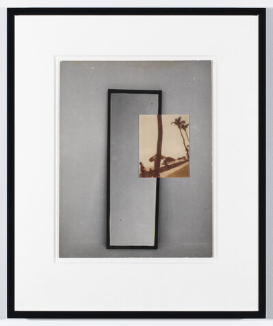 William Wegman, 'Window', 1979