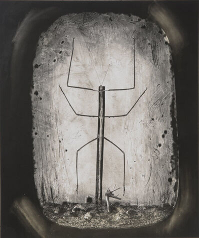 Joel-Peter Witkin, 'Insects Reenacting the Crucifixion', 2015