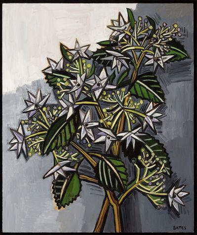 David Bates, 'Shooting Star Hydrangea', 2017