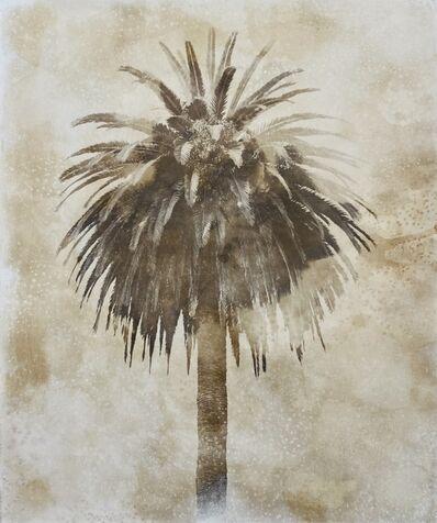Robert Stivers, 'Palm 4', 2019