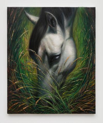 TM Davy, 'horse (xooo)', 2016