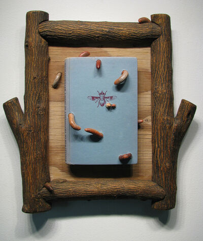 Sarah Perry, 'Wigglesworth, Phase 1', 2013