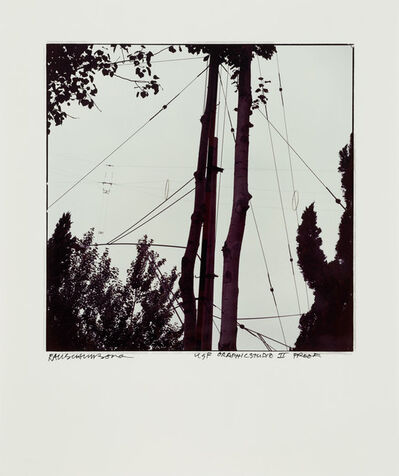 Robert Rauschenberg, 'Study for Chinese Summerhall - Wires & Tree', 1983