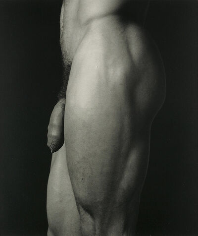 Robert Mapplethorpe, 'Untitled', 1981