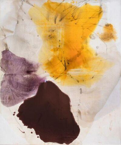 Dirk de Bruycker, 'Pale Morpho III', 2011