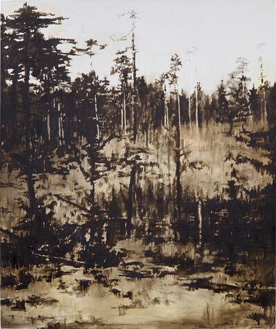 Florian Süssmayr, 'Untitled', 2007