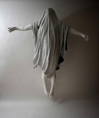 Michael Kucera, 'I will fly again', 2017