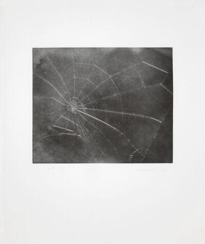 Vija Celmins, 'Web #5', 2009
