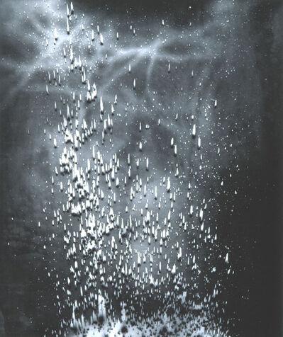Michael Flomen, 'Untitled #8', 2005