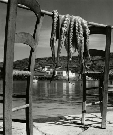 Herbert List, 'Octopus, Ionian island of Corfu, Greece ', 1938