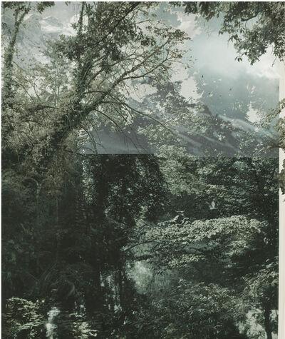Aki Lumi, 'The Garden No. 6', 2012