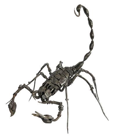 """Ara Alekian, '""""Scorpion"""" /""""Akrep""""', 2013"""