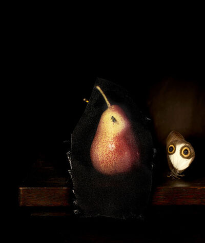 CJ Taylor, 'Still life with Pear and Housefly', 2014