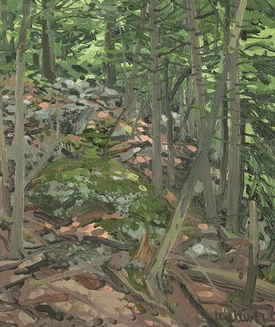 Neil G. Welliver, 'Landscape Study', 1979