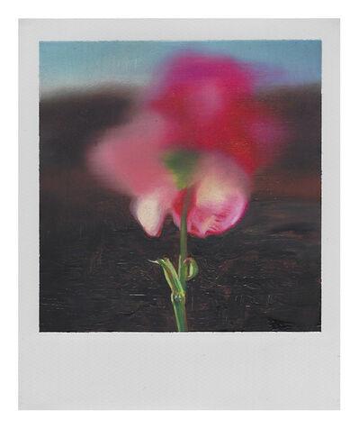 Martí Cormand, 'Dad's pink Flower', 2019