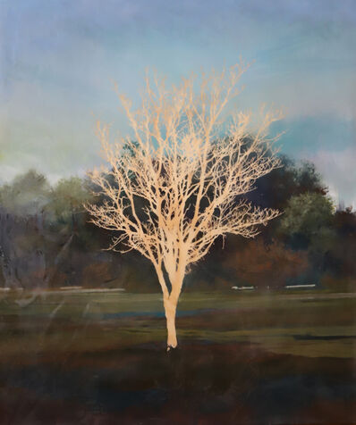 Peter Hoffer, 'Tree', 2018