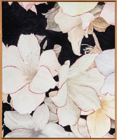 Martin van Vreden, 'untitled', 1996