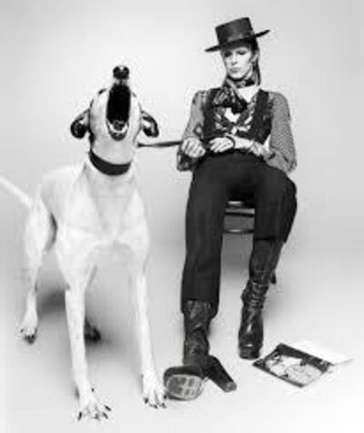 Terry O'Neill, 'Diamond Dogs', 1974