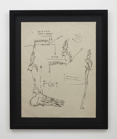 Jean-Michel Basquiat, 'Leg of a Dog, from Da Vinci', 1983