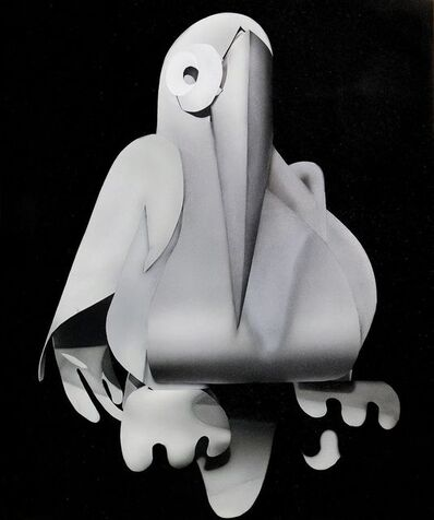 Kara Joslyn, 'Toucan', 2016