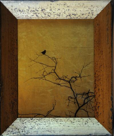 Kate Breakey, 'Single Bird in Tree [Ref. #48]', 2015