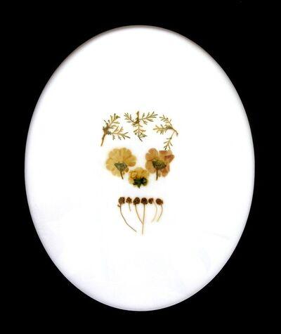 Mercedes Baliarda, 'De repente me aplastó contra su corazón', 2010