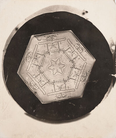 Wilson A. Bentley, 'Snowflake [8802]', 1885-1931
