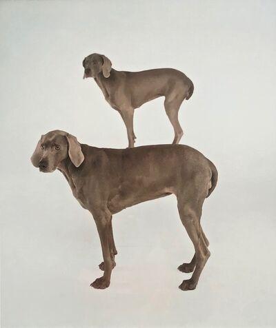 William Wegman, 'Dog and Pony', 1997