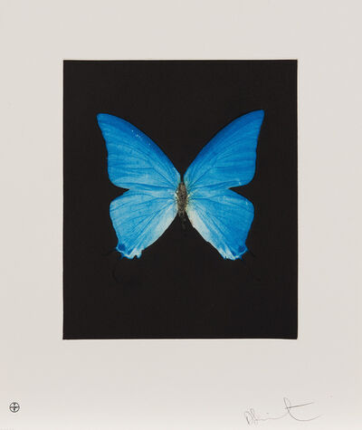 Damien Hirst, 'Providence, from Butterfly Etchings', 2009