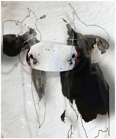 Deborah Oropallo, 'Mask'