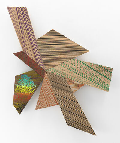 Jason Middlebrook, 'Inspired by Lines of the Silver Fir', 2019