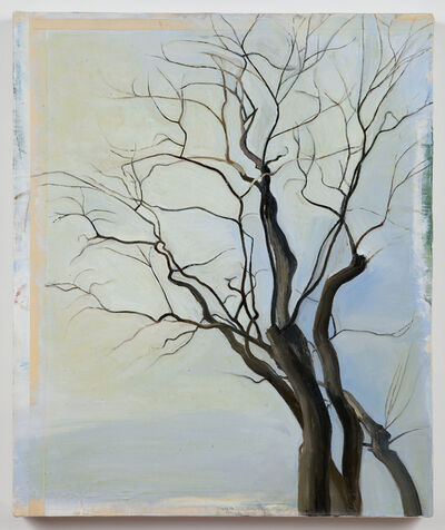 Sylvia Plimack Mangold, 'The Locust Trees 2/87', 1987