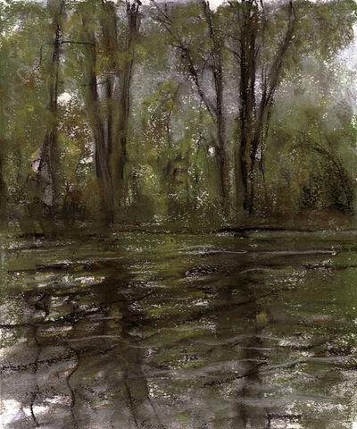Jim Schantz, 'Housatonic Reflection'