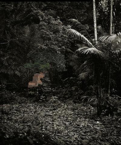 Caio Reisewitz, 'fidalga', 2012