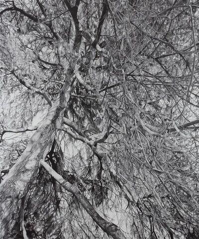 Mirjam Abraas, 'Untitled', 2013