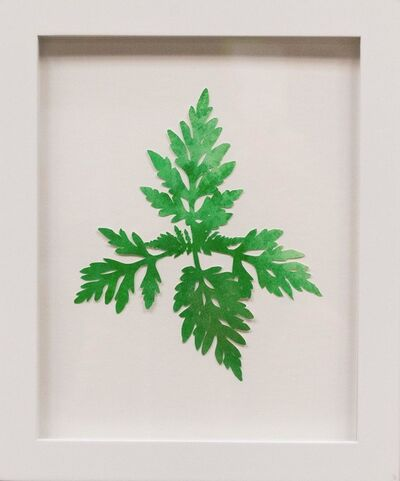 Hannah Cole, 'Tiny Lacy Weed', 2018