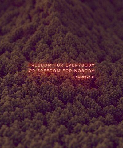 David Stenbeck, 'Freedom For Everybody', 2020