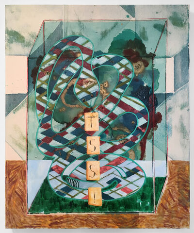 Angelina Gualdoni, 'Vitrine with Four Lined Snake', 2019