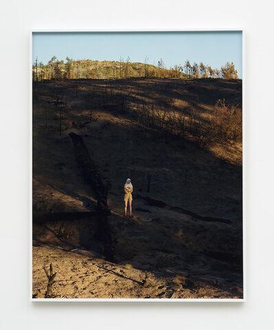 Torbjørn Rødland, 'SoCal Muspelheim', 2020