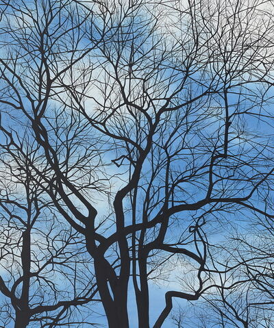 Rebecca Partridge, 'Sky Trees', 2014
