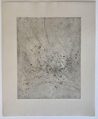 Chrisél Attewell, 'Garden Drawing VIIII', 2020