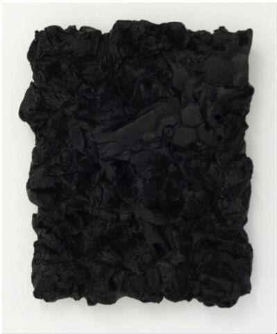 Peter Wu, 'Substantio Nigra (figure 3)', 2013