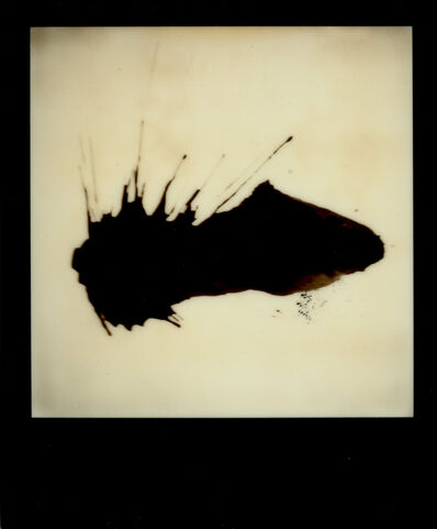 Nobuyoshi Araki, 'Untitled', 2012-2015