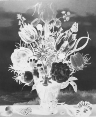 Vera Lutter, 'Ambrosius Bosschaert, Bouquet of Flowers on a Ledge, 1619: September 15', 2017