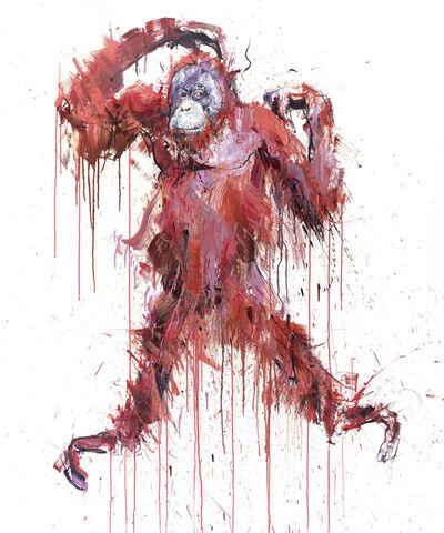 Dave White, 'Orangutan I', 2019
