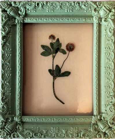 Jil Weinstock, 'In Viriditas Viridis in Mentham / Weed in Mint Green Frame', 2019